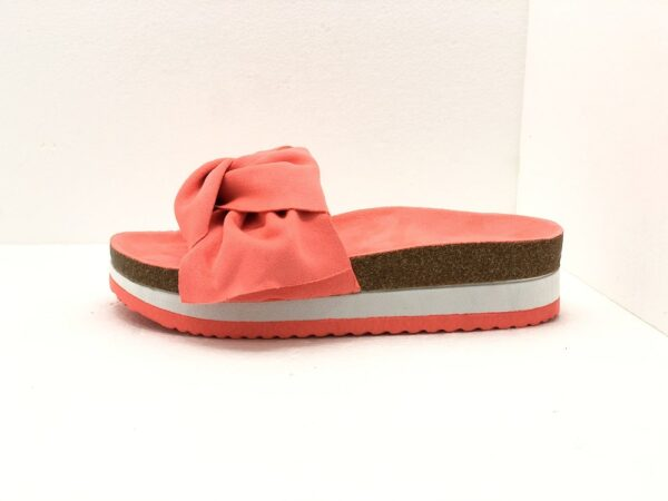 SS116-coral2